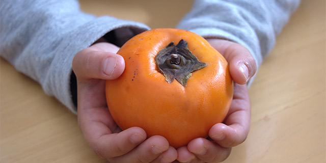 kakishibu-mania-3-additive-safety-persimmon